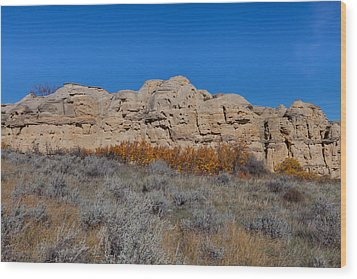Wood Print featuring the photograph Cliffs Of Hoodoos by Fran Riley