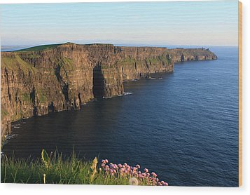 Cliffs Of Moher In Evening Light Wood Print