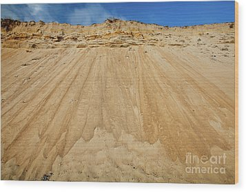 Wood Print featuring the photograph Cliffward by Susan Cole Kelly