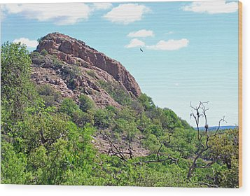 Wood Print featuring the photograph Climbing Rock by Teresa Blanton