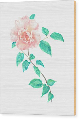 Wood Print featuring the painting Climbing Rose by Elizabeth Lock