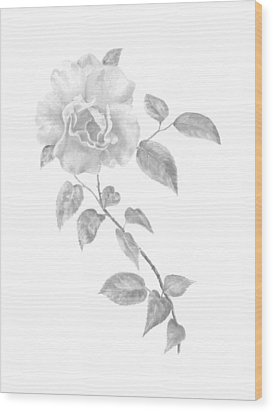 Wood Print featuring the painting Climbing Rose II by Elizabeth Lock