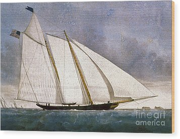 Clipper Yacht America Wood Print by Granger