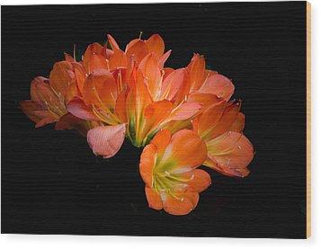 Clivia Flora Wood Print by Bruce Pritchett