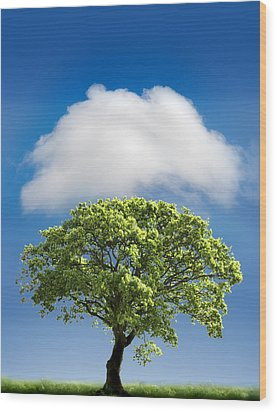 Cloud Cover Wood Print by Mal Bray