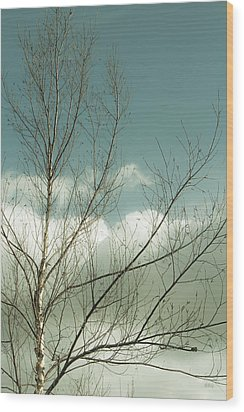 Cloudy Blue Sky Through Tree Top No 1 Wood Print by Ben and Raisa Gertsberg