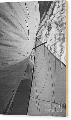 Cloudy Sky Seen Through Billowing White Sails Wood Print by Sami Sarkis