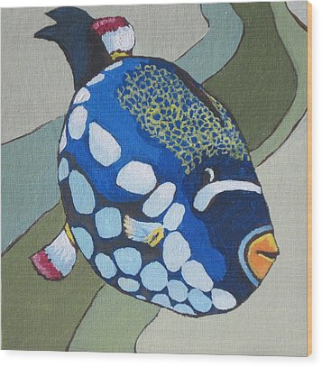 Clown Triggerfish Wood Print by Sandy Tracey