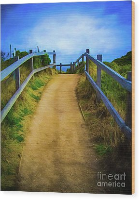 Wood Print featuring the photograph Coast Path by Perry Webster