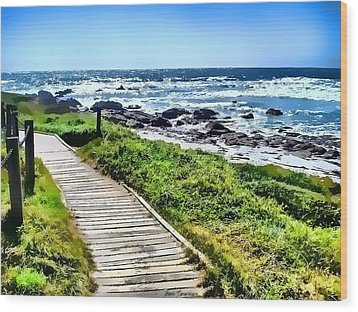 Wood Print featuring the photograph Coast Trail At Pebble Beach by Kathy Tarochione