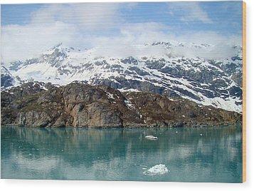 Coastal Beauty Of Alaska 5 Wood Print