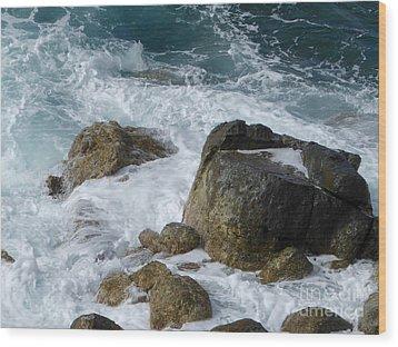 Coastal Rocks Trap Water Wood Print