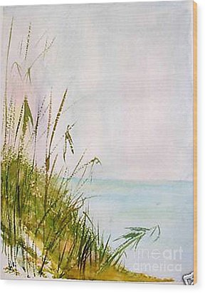 Wood Print featuring the painting Coastal Scene by Sibby S