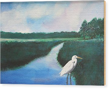 Coastal Wetlands Wood Print