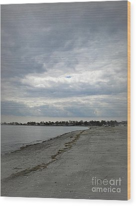Wood Print featuring the photograph Coastal Winter by Kristine Nora
