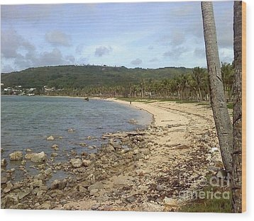 Coastline In Guam II Wood Print