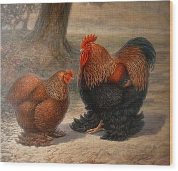 Cochin Chickens Wood Print by Hans Droog