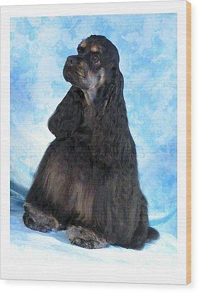 Cocker Spaniel 405 Wood Print by Larry Matthews