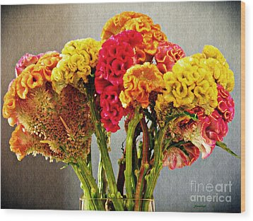 Wood Print featuring the photograph Cockscomb Bouquet 3 by Sarah Loft