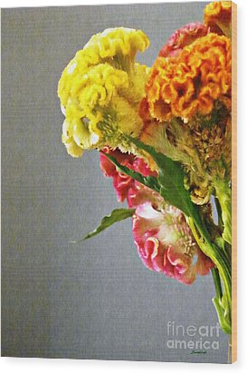 Wood Print featuring the photograph Cockscomb Bouquet 4 by Sarah Loft