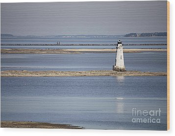 Cockspur Island Lighthouse With Jetty Wood Print by Carol Groenen