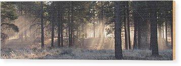 Coconino Dawn Wood Print
