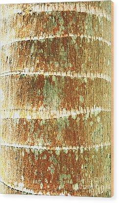 Coconut Palm Bark 2 Wood Print by Brandon Tabiolo - Printscapes