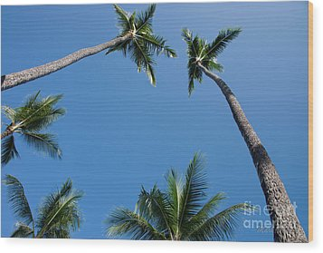 Coconut Palms Wood Print