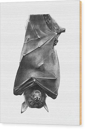 Coffie The Fruit Bat Wood Print by Abbey Noelle
