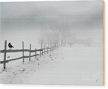 Cold Crow Wood Print
