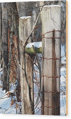 Cold Division Wood Print by Peter  McIntosh
