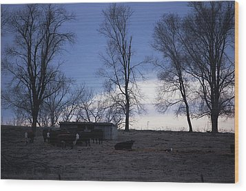 Cold Iowa Evening Wood Print by Jame Hayes