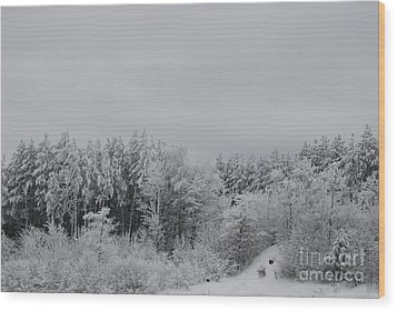 Cold Mountain Wood Print by Randy Bodkins