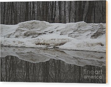 Wood Print featuring the photograph Cold Rain And Snow by Jesse Ciazza
