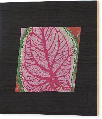 Coleus Wood Print by Jenny Williams