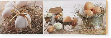 Collage Of Assorted Egg Images  Wood Print by Sandra Cunningham