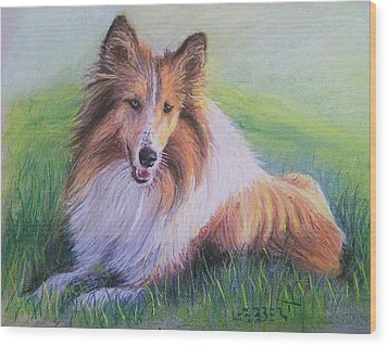 Collie Wood Print by Dave Luebbert