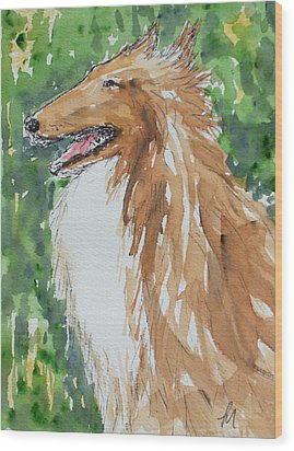Collie Wood Print by Pete Maier