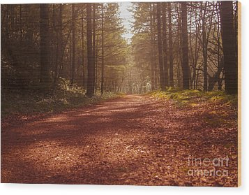 Colligan Autumn 2 Wood Print