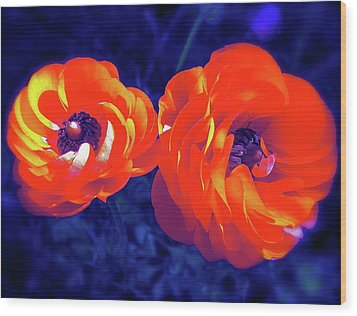Wood Print featuring the photograph Color 12 by Pamela Cooper