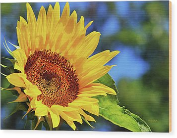 Color Me Happy Sunflower Wood Print by Christina Rollo