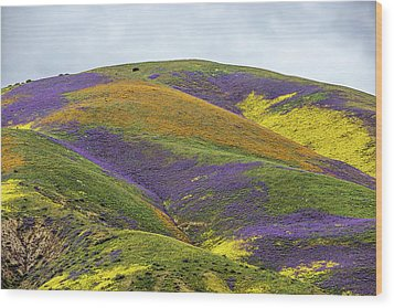 Wood Print featuring the photograph Color Mountain I by Peter Tellone