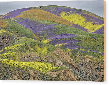 Wood Print featuring the photograph Color Mountain II by Peter Tellone