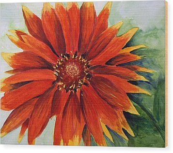 Color My Daisy Wood Print by Tina Storey