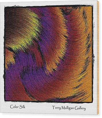 Color Silk Wood Print by Terry Mulligan