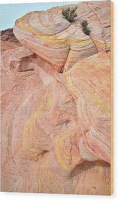 Wood Print featuring the photograph Color Swirls In Valley Of Fire State Park by Ray Mathis