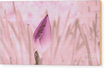 Color Trend Flower Bud Wood Print