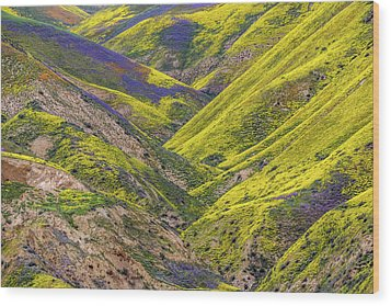 Wood Print featuring the photograph Color Valley by Peter Tellone