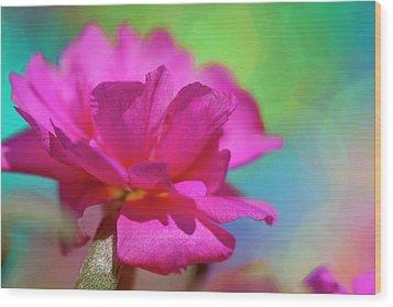 Color2 Wood Print