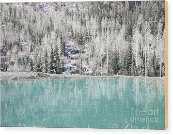 Colorado Aqua Woodland Forest Landscape Wood Print by Andrea Hazel Ihlefeld